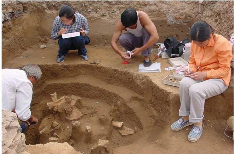 刘一曼:我的甲骨学研究之路