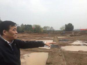 湖北旁协助:黄陂新发现32座新石器时代墓葬