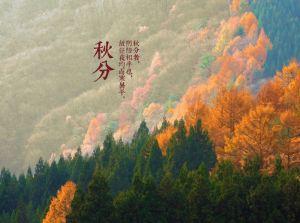宗和:秋分之美——壁画里的山水与稻田,已悄然入秋
