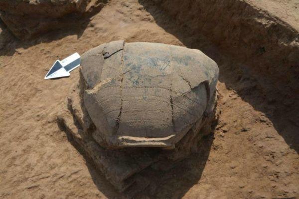 辽宁马鞍桥山遗址首次发掘工作结束 出土文物1000余件
