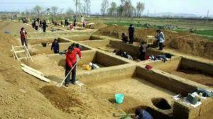 青铜时代 · 大辛庄遗址