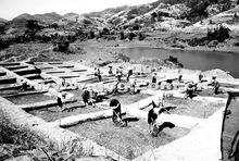 蒋波:从出土器物看湘潭的早期文明印迹
