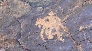 内蒙古:新发现一处古代游牧民族岩画群