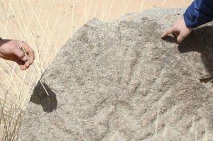 内蒙古阿拉善新发现古代岩画遗址