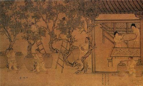 铁器时代  ·  汉代纺织品