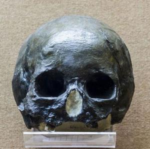 旧石器时代 · 丽江人地点