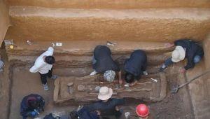 陕西:发现一完整西汉早期墓葬 出土罕见陶仓装满小米